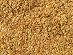 We offer our harvest of 2018: golden flax and confectionery